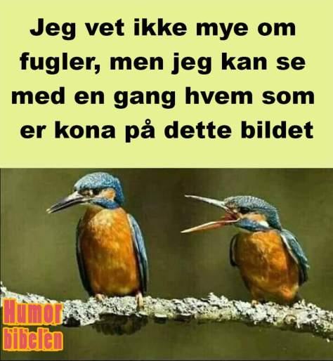 FB_IMG_1580550715813