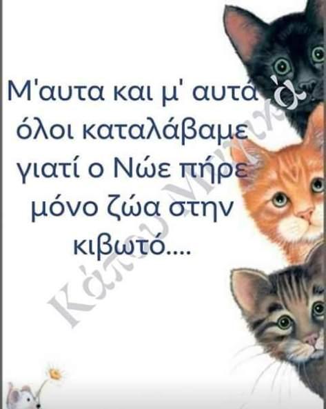 FB_IMG_1584969575332